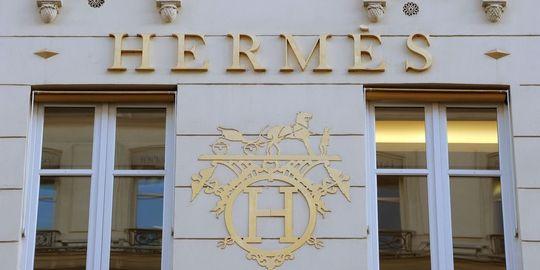 hermes-holding-h51